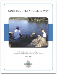 Angler-survey-cover_4web