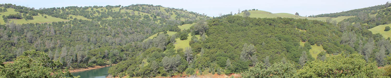 river flowing through Sierra foothills landscape