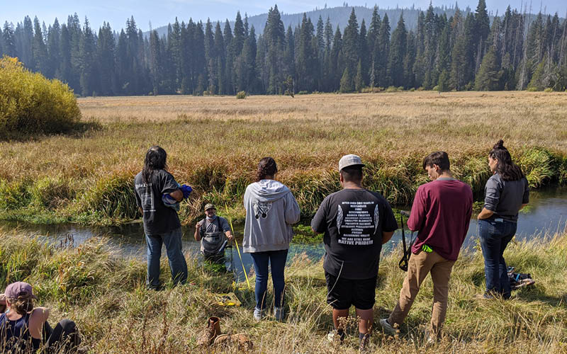 Tribal youth watching a water quality monitoring demonstration in a meadow creek